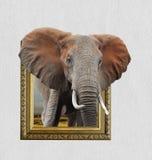 Elefante no quadro com efeito 3d Foto de Stock Royalty Free