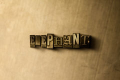 ELEFANTE - primer de la palabra compuesta tipo vintage sucio en el contexto del metal Fotografía de archivo