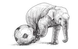 Elefante que juega al fútbol, ejemplo del drenaje de la carta blanca del bosquejo Fotos de archivo