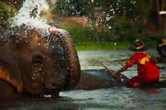 Elefante que se baña en el río Imágenes de archivo libres de regalías