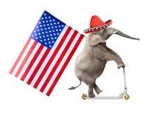 Elefante republicano Imagen de archivo libre de regalías