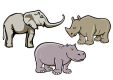 Elefante, rinoceronte y hipopótamo Fotos de archivo