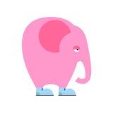 Elefante rosado grande en zapatos Animal triste con el tronco y los oídos grandes Fotos de archivo libres de regalías