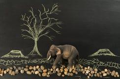Elefante solo nel disboscare dall'essere umano fotografia stock libera da diritti