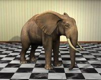 Elefante, stanza, illustrazione a quadretti del pavimento Fotografie Stock