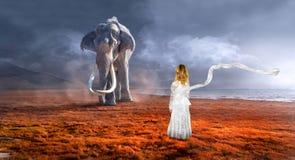 Elefante surreale, fauna selvatica, immaginazione, ragazza fotografie stock
