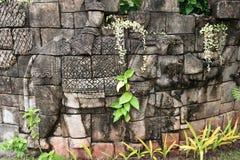 Elefante in vecchia parete di pietra immagine stock libera da diritti