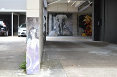 Elefante y mujer Foto de archivo libre de regalías