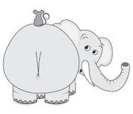 Elefante y ratón Foto de archivo libre de regalías