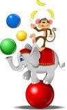 Elefante y un mono Fotos de archivo libres de regalías