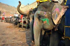 Elefanten am bernsteinfarbigen Fort Lizenzfreie Stockfotos