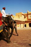 Elefanten am bernsteinfarbigen Fort Stockfotografie