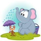 Elefanten häller vatten på mus Royaltyfri Fotografi