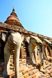 elefanten omringar Arkivfoto