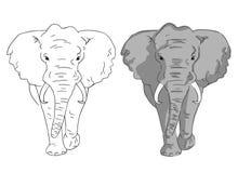 Elefanten skissar i färg och linjer Enkla elefanter på vit bakgrund royaltyfri illustrationer