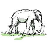 Elefanten skissar vektorn royaltyfri illustrationer
