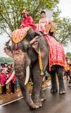 Elefanten ståtar Arkivfoto