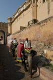 Elefanten und Mahouts bei Amber Fort Lizenzfreies Stockfoto