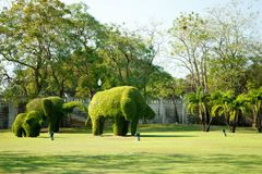 Elefanter - buskesnitt till djura figufres i parkera av smällen PA-i slott arkivbilder