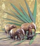 Elefanter i djungel Arkivbilder