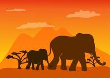 Elefanter i savannahen Arkivfoton