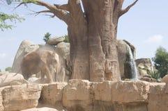 elefanter near den gammala treen Arkivfoton