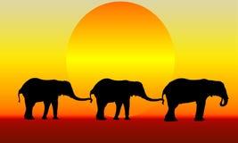 elefanter tre Royaltyfri Illustrationer