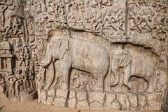 Elefanter vaggar i Mamallapuram Fotografering för Bildbyråer
