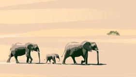 Elefantes stock de ilustración