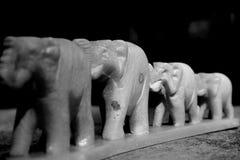 elefantes Imagens de Stock Royalty Free