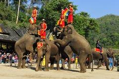 Elefantes como atracción turística, China Imágenes de archivo libres de regalías