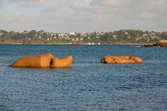 Elefantes cor-de-rosa do granito perto de Perros Guirec em Brittany Fotos de Stock Royalty Free