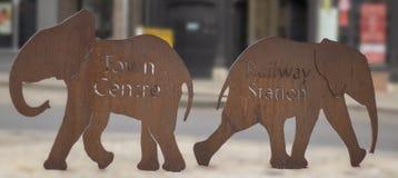 Elefantes de Colchester que muestran la manera fotos de archivo