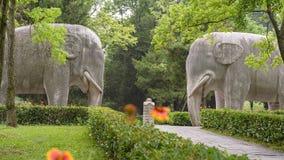 Elefantes de piedra Imagen de archivo