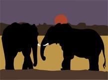 Elefantes de um par Foto de Stock Royalty Free
