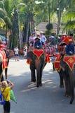 Elefantes do passeio dos povos Fotografia de Stock Royalty Free