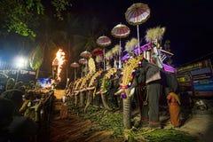 Elefantes en el festival del templo hindú Imagen de archivo libre de regalías