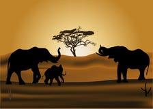 Elefantes en la ilustración de la puesta del sol Imagen de archivo