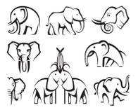 Elefantes fijados Foto de archivo libre de regalías