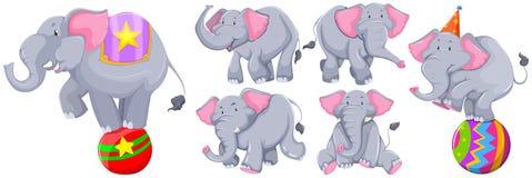 Elefantes grises en diversas acciones ilustración del vector