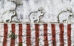 Elefantes hindúes de Haputale Fotografía de archivo libre de regalías