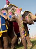 Elefantes pintados en desfile Fotos de archivo libres de regalías