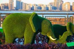 Elefantes verdes hechos acortando árboles foto de archivo libre de regalías