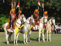 elefantfestival india jaipur Royaltyfria Foton