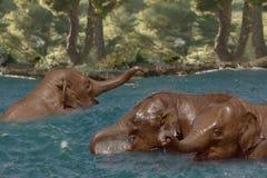 elefantflod Arkivfoto