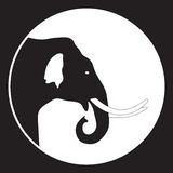 Elefanthuvud i svartvitt Royaltyfria Foton