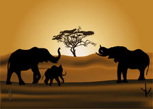 Elefanti all'illustrazione di tramonto Immagine Stock