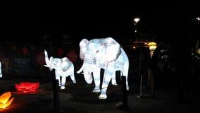Elefanti bianchi magici Immagine Stock Libera da Diritti