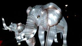 Elefanti bianchi magici accesi Fotografia Stock Libera da Diritti