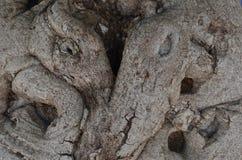 Elefanti gemellati su un tronco di albero Immagine Stock Libera da Diritti